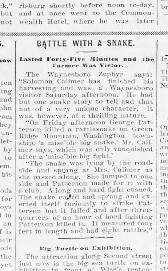 "1901 August 14 Calimer and Patterson snake story - risburg shortly before noon to - day, ""but and..."