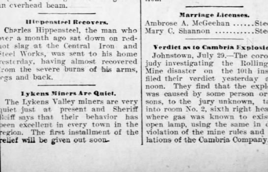 1902 July 29 Hbg Telegraph -