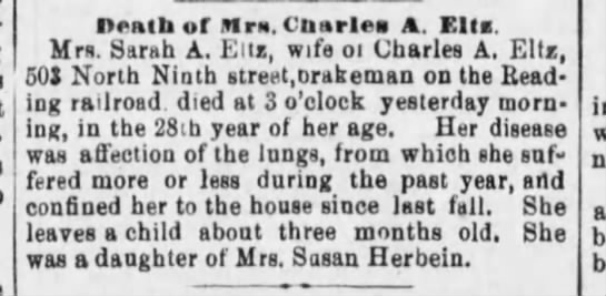 Reading Time (Reading, PA) 27 Jan 1881, page 1 -