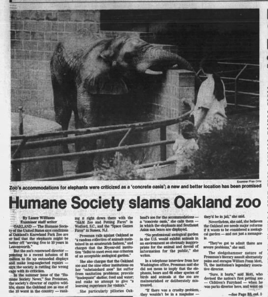 Humane Society Slams Oakland Zoo - SF Examiner July 31, 1983 -