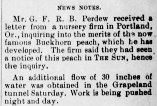 18 Sep 1894-famous Buckhorn Peach variety developed by GFRB Perdew-The Daily Sun SBdnoCA -