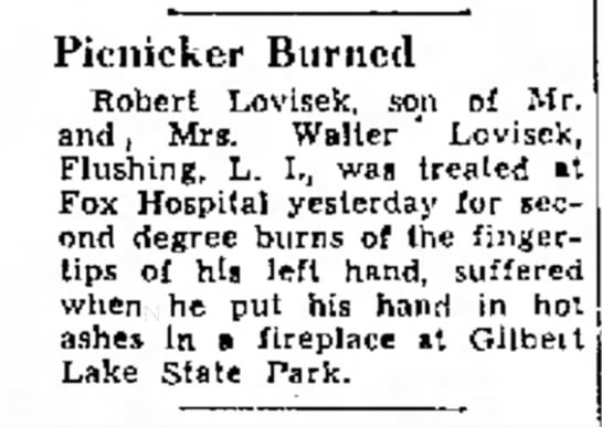 - Picnicker Burned Robert Lovisek, son of Mr. a n...