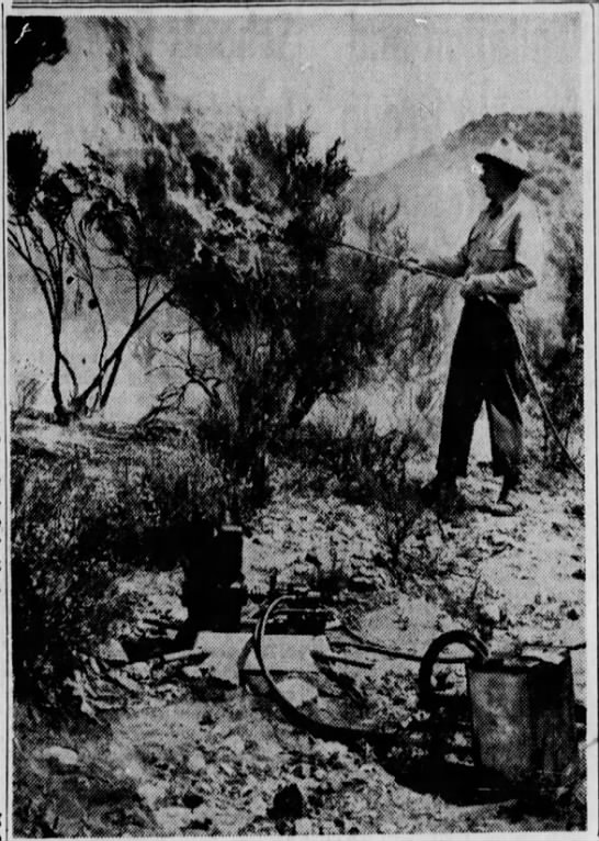 1948-5-30 Forest Service Sets Worl On Fire PIC 1 -