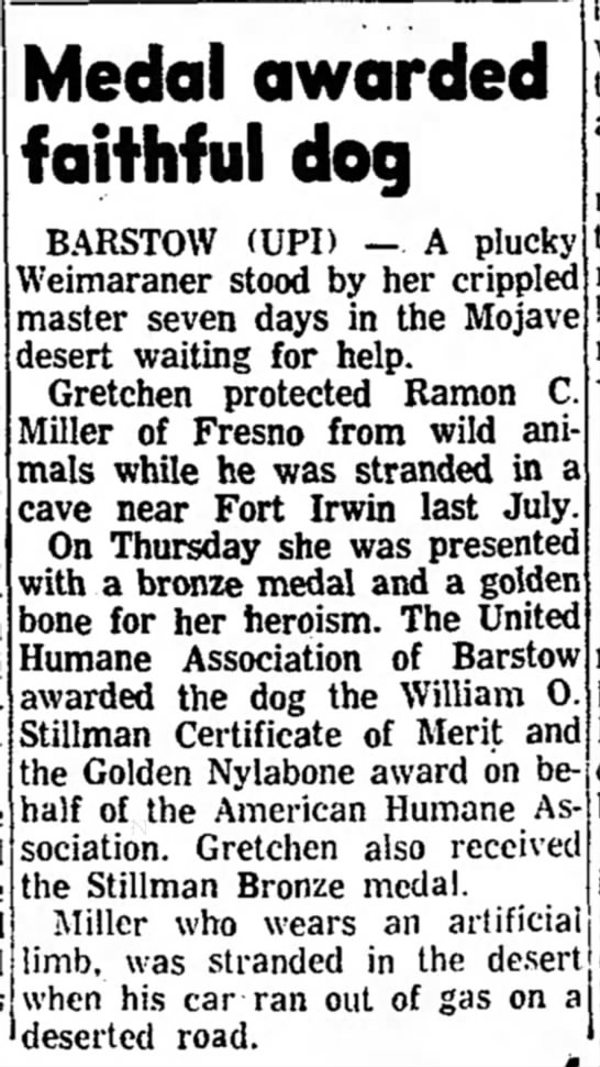 - Medal awarded faithful dog B.-iRSTOW (UPI) — A...