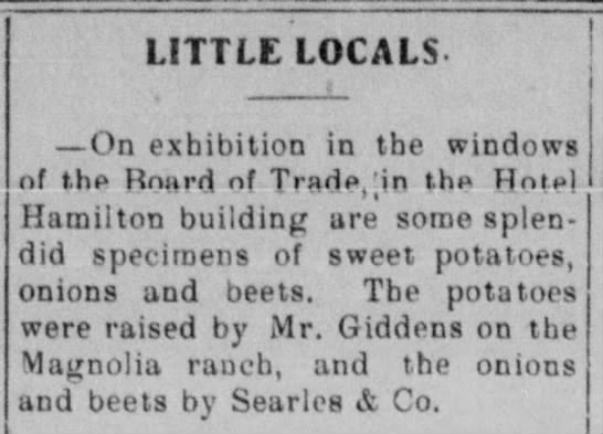 Mr Giddens potatoes Laredo Weekly Times, Nov 14, 1909 -