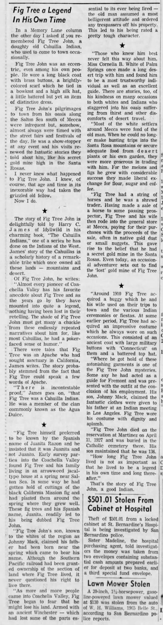 fig tree legend in his own time august 6, 1961 -
