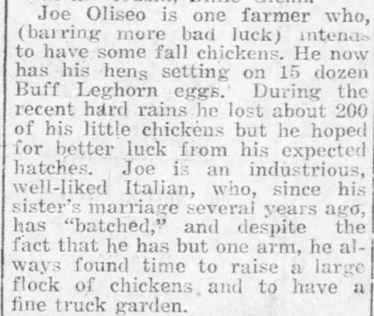 Article about Joe Olliso - Joe Oliseo is one farmer who. (bairing more bad...