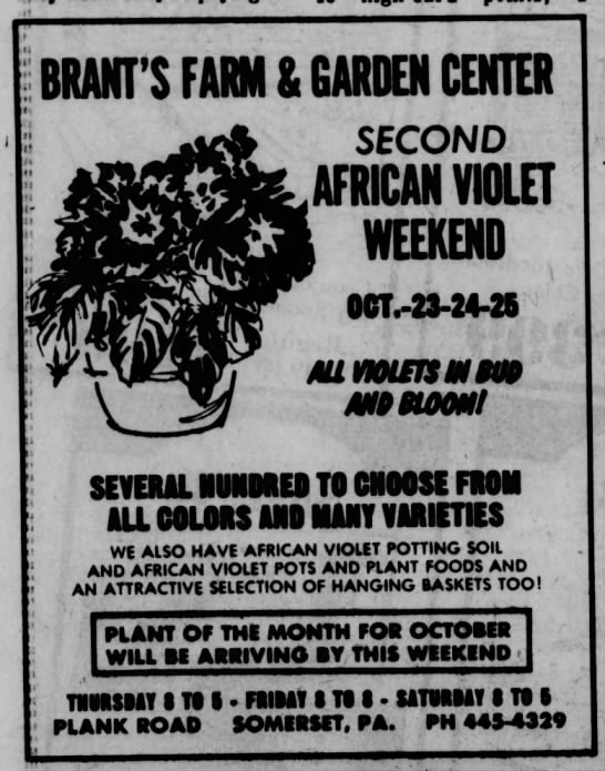 23 October 1975, Somerset Daily American -