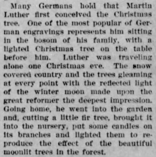 Lights in the tree like stars in the forest, Martin Luther legend -