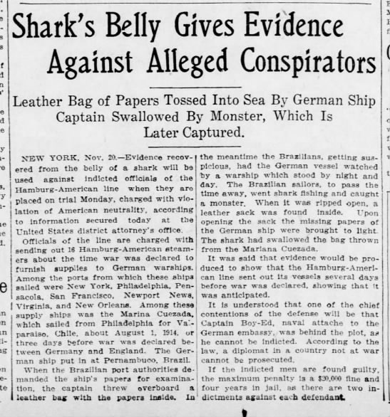 Shark's Belly Gives Evidence Against Alleged Conspirators, 1915 - an Shark's Belly Gives Evidence Against Alleged...