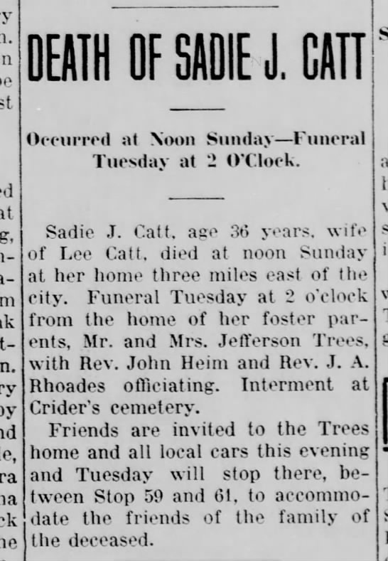 sadie catt foster daughter of Jefferson Trees -
