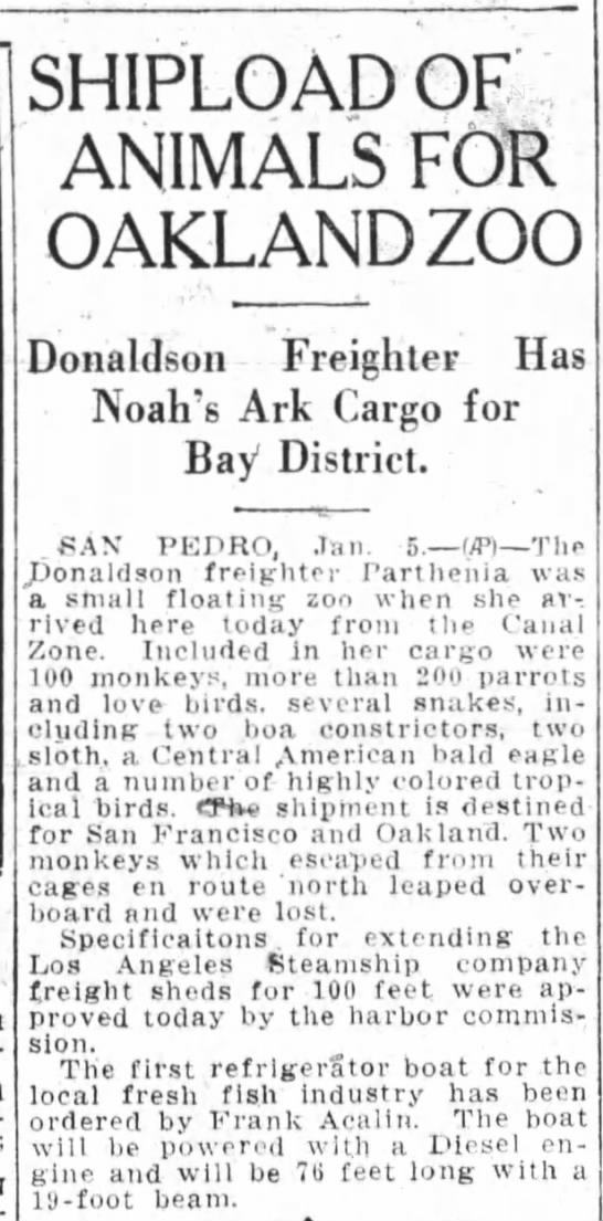 Shipload of Animals For Oakland Zoo -Jan 05, 1928 -