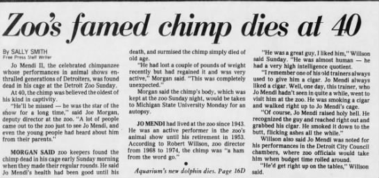 Zoo's famed chimp dies at 40 -