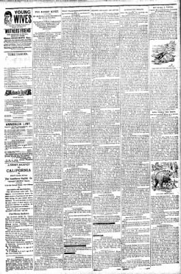 Logansport Pharos-Tribune from Logansport, Indiana on September 8, 1896 · Page 7
