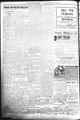 The Daily Deadwood Pioneer-Times from Deadwood, South Dakota on March 22, 1899 · Page 4