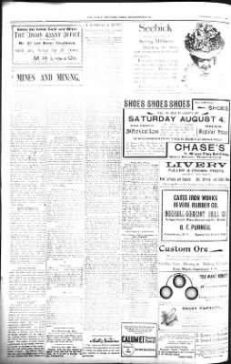 The Daily Deadwood Pioneer-Times from Deadwood, South Dakota on August 1, 1900 · Page 12