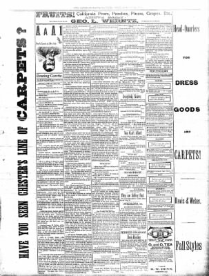Sterling Daily Gazette from Sterling, Illinois on August 28, 1889 · Page 3