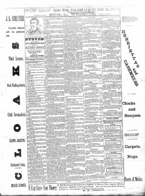 Sterling Daily Gazette from Sterling, Illinois on October 9, 1889 · Page 3