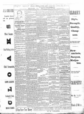 Sterling Daily Gazette from Sterling, Illinois on October 10, 1889 · Page 3