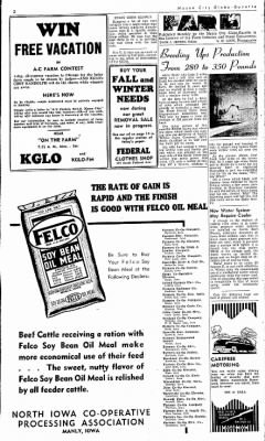 Globe-Gazette from Mason City, Iowa on October 12, 1949 · Page 13