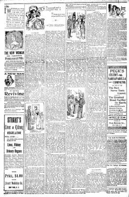 Logansport Pharos-Tribune from Logansport, Indiana on May 7, 1898 · Page 22