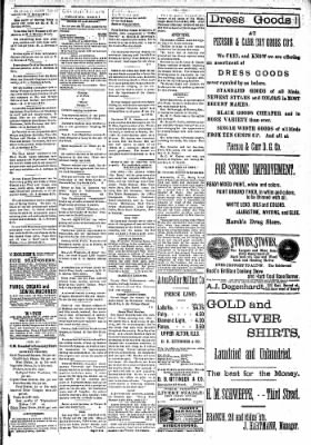 Alton Evening Telegraph from Alton, Illinois on March 7, 1887 · Page 3