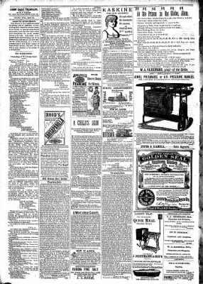 Alton Evening Telegraph from Alton, Illinois on May 20, 1887 · Page 2