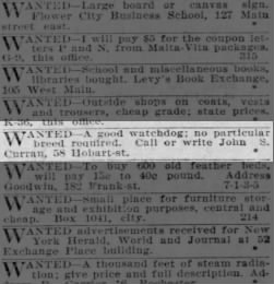 Democrat and Chronicle from Rochester, New York on December 13, 1903