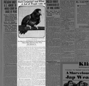 1930: The Zoo's profane parrot