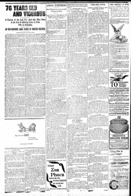 Logansport Pharos-Tribune from Logansport, Indiana on June 4, 1896 · Page 6