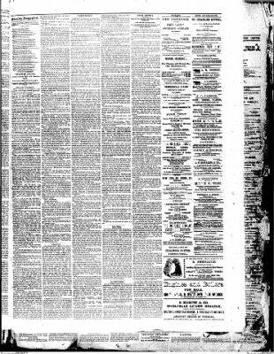 Morning Oregonian from Portland, Oregon on February 12, 1882 · Page 3