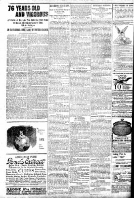 Logansport Pharos-Tribune from Logansport, Indiana on June 11, 1896 · Page 6
