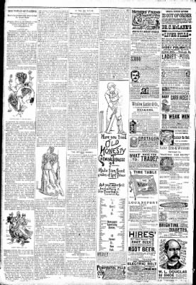 Logansport Pharos-Tribune from Logansport, Indiana on January 22, 1891 · Page 6