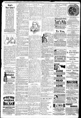 Logansport Pharos-Tribune from Logansport, Indiana on January 23, 1891 · Page 7