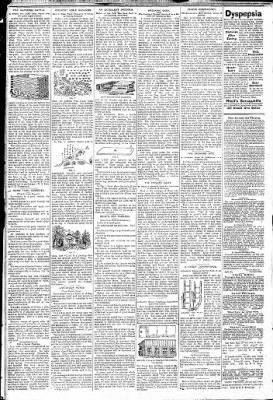 Logansport Pharos-Tribune from Logansport, Indiana on January 24, 1891 · Page 2