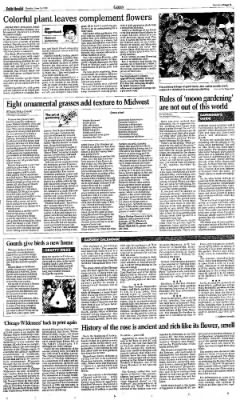 The Daily Herald from Chicago, Illinois on June 14, 1998 · Page 262