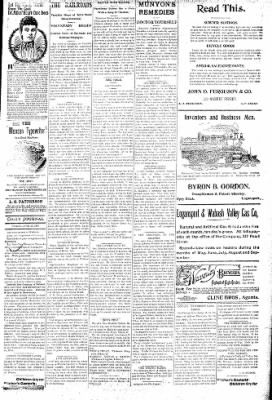 Logansport Pharos-Tribune from Logansport, Indiana on June 19, 1896 · Page 3