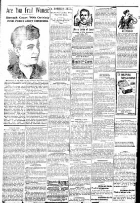 Logansport Pharos-Tribune from Logansport, Indiana on January 25, 1895 · Page 2