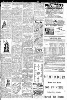 Logansport Pharos-Tribune from Logansport, Indiana on February 6, 1891 · Page 2