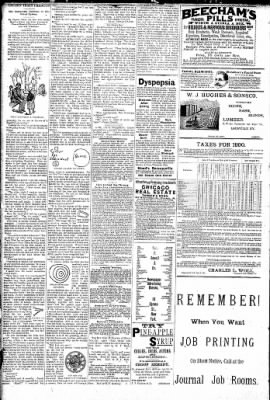 Logansport Pharos-Tribune from Logansport, Indiana on February 7, 1891 · Page 2