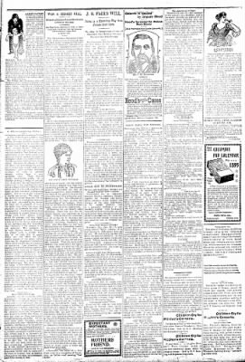 Logansport Pharos-Tribune from Logansport, Indiana on January 30, 1895 · Page 2