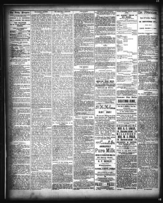The Times-Picayune from New Orleans, Louisiana on January 16, 1885 · Page 4