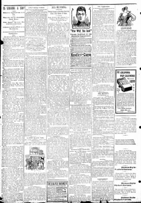 Logansport Pharos-Tribune from Logansport, Indiana on January 31, 1895 · Page 2