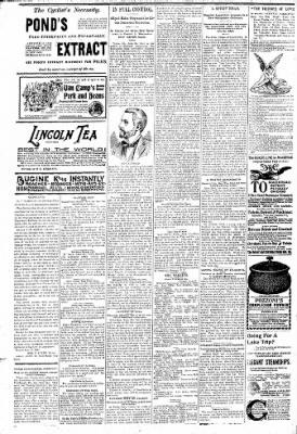 Logansport Pharos-Tribune from Logansport, Indiana on June 23, 1896 · Page 6