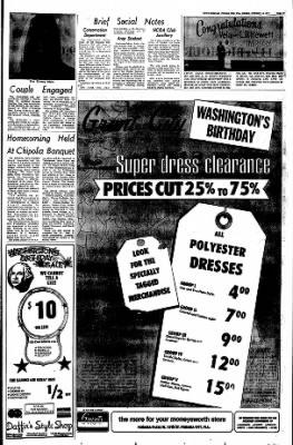 Panama City News-Herald from Panama City, Florida on February 18, 1973 · Page 41