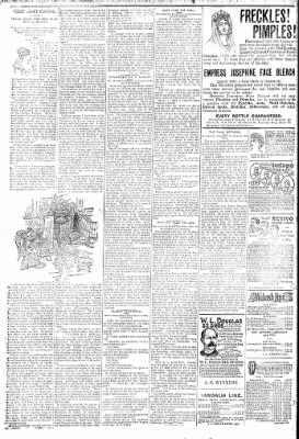 Logansport Pharos-Tribune from Logansport, Indiana on February 1, 1895 · Page 6