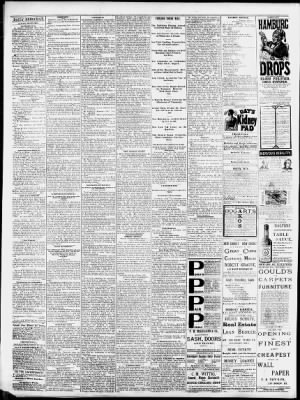Quad-City Times from Davenport, Iowa on June 23, 1880 · 4