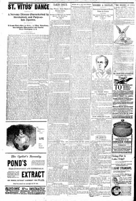 Logansport Pharos-Tribune from Logansport, Indiana on June 25, 1896 · Page 6