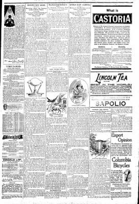 Logansport Pharos-Tribune from Logansport, Indiana on June 26, 1896 · Page 7
