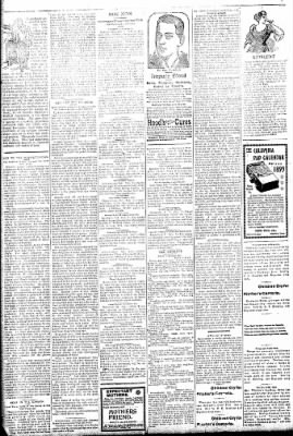 Logansport Pharos-Tribune from Logansport, Indiana on February 8, 1895 · Page 2